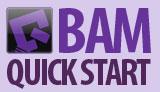 BAM Quick Start Guide
